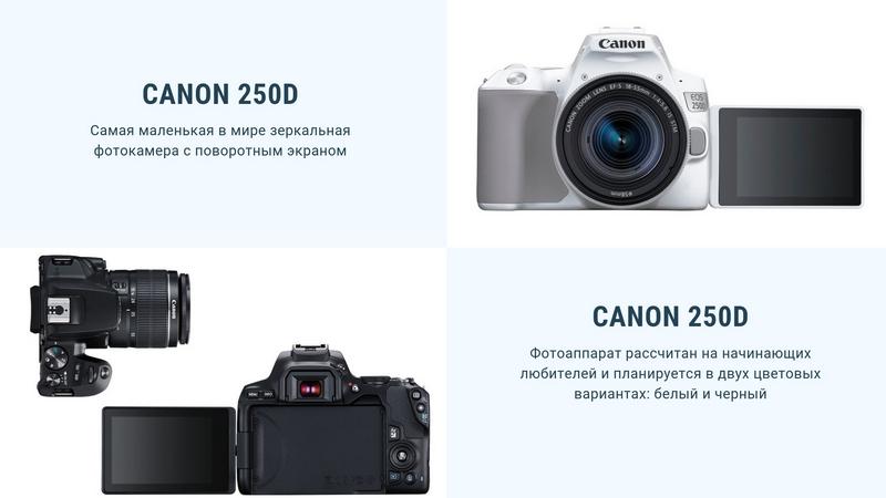 Обзор фотокамеры Canon 250D