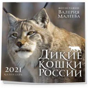 Книга Дикие кошки России